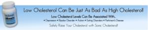 Sonic-Cholesterol-header1-e1321203469261