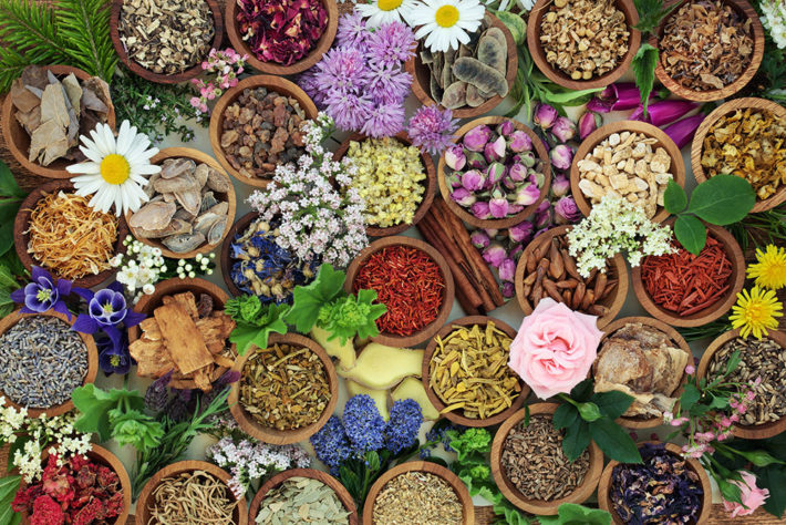 botanical-medicine-insert